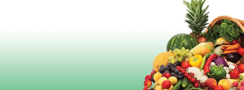Susan-Cambell-Health-Coach-Nutrition