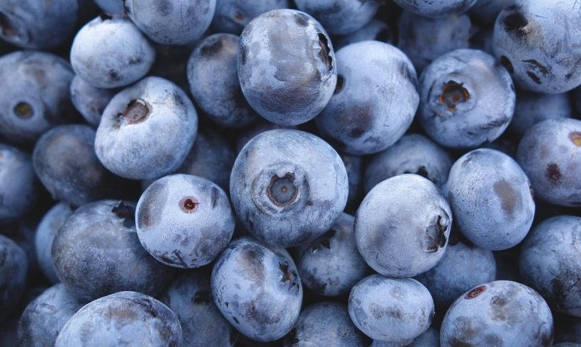Blueberry Muffin Energy Bites | Juice Plus +