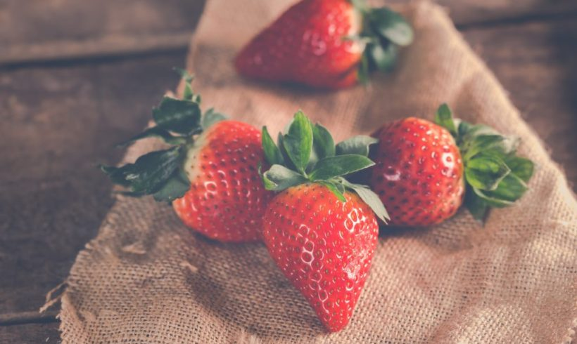 Champs de fraises à l'infini | Juice Plus +